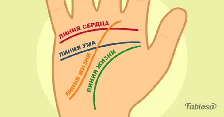Как узнать свое будущее по руке